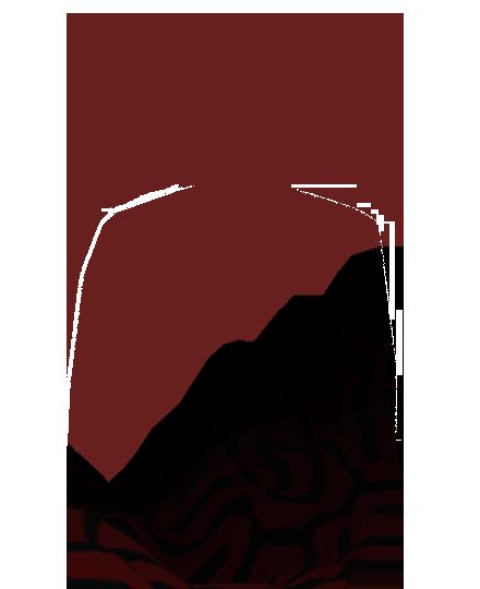 nicolo-marostica